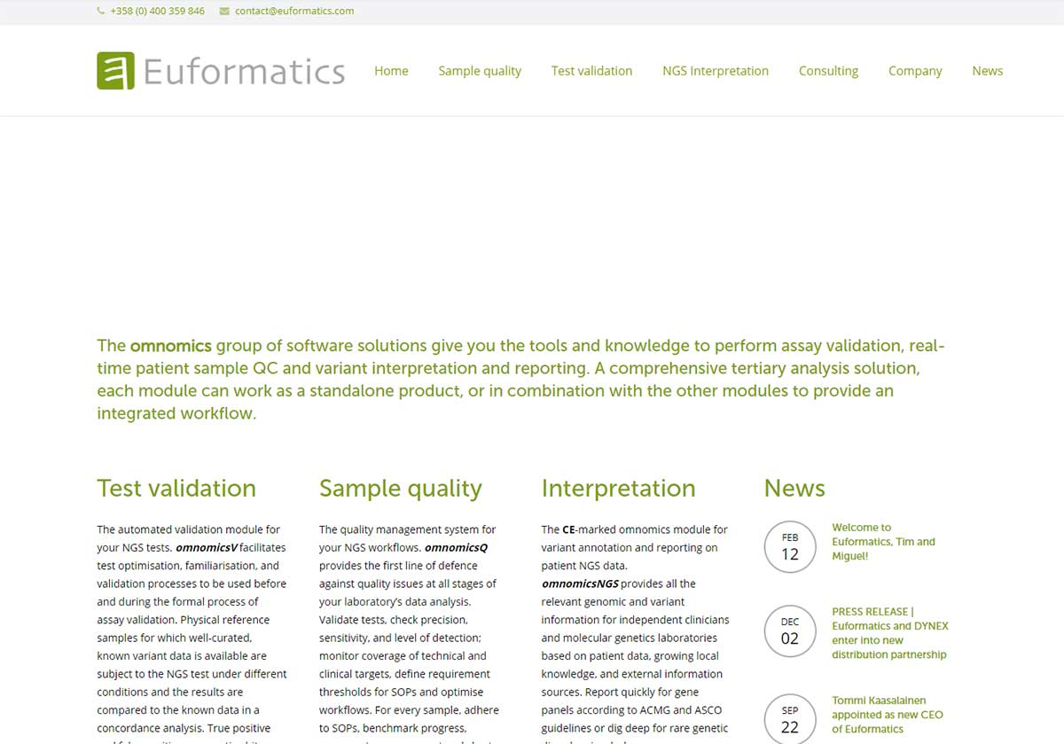 Euformatics verkkosivut ennen